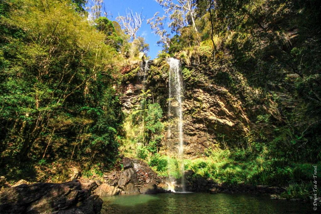 australia travel tips: We 'bushwalked' to the beautiful Twin Falls, Springbrook National Park, Queensland