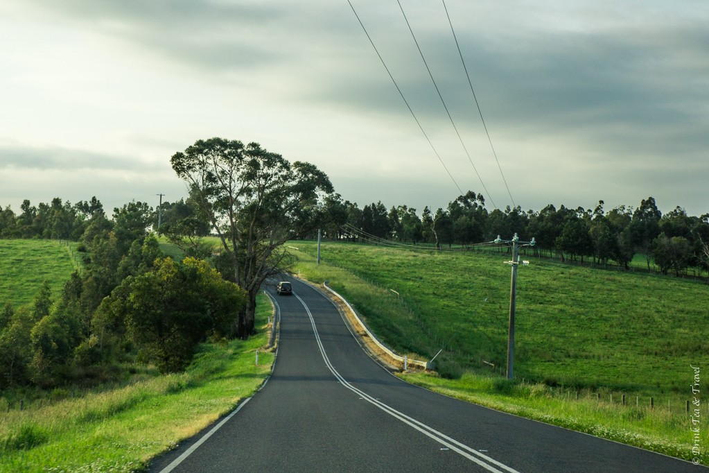 Australia travel tips: It's helpful to have data for getting from place to place